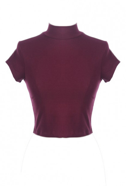 High Neck Short Sleeve Crop Top
