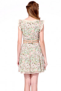 Floral Print Ruffle Sleeve Lace Collar Dress