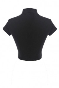 High Neck Short Sleeve Crop Top