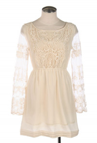 Crochet Lace Mesh Long Sleeve Dress in Cream
