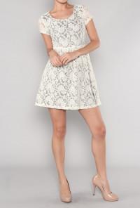 Short Sleeve Floral Lace Tea Dress