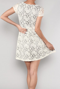 Short Sleeve Floral Lace Tea Dress