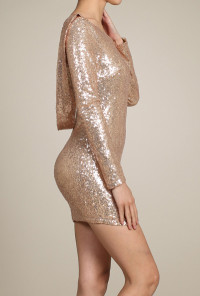 Gold Long Sleeve Scoop Neck Sequin Bodycon Dress