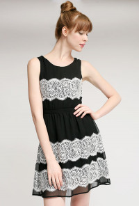 Black Sleeveless Contrast Lace Dress