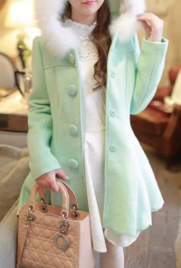 winter vintage mint coat