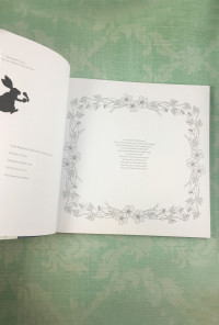 Wonderland Coloring Book by Amily Shen