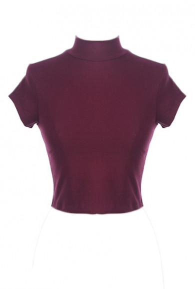 Crop Top - Quintessentially Swift High Neck Short Sleeve Crop Top in Burgundy