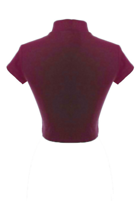 e6e64407ffc58a Crop Top - Quintessentially Swift High Neck Short Sleeve Crop Top in ...
