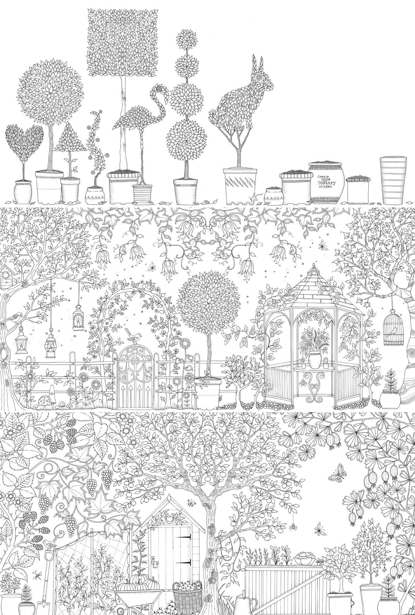 Secret Garden Coloring Book Enchanted Forest