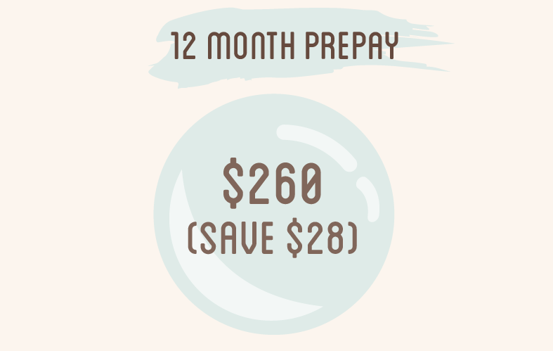 12 month prepay